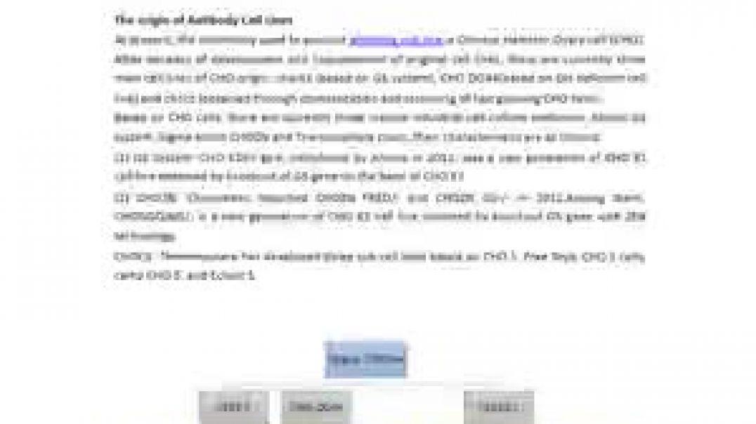 Antibody Cell Lines