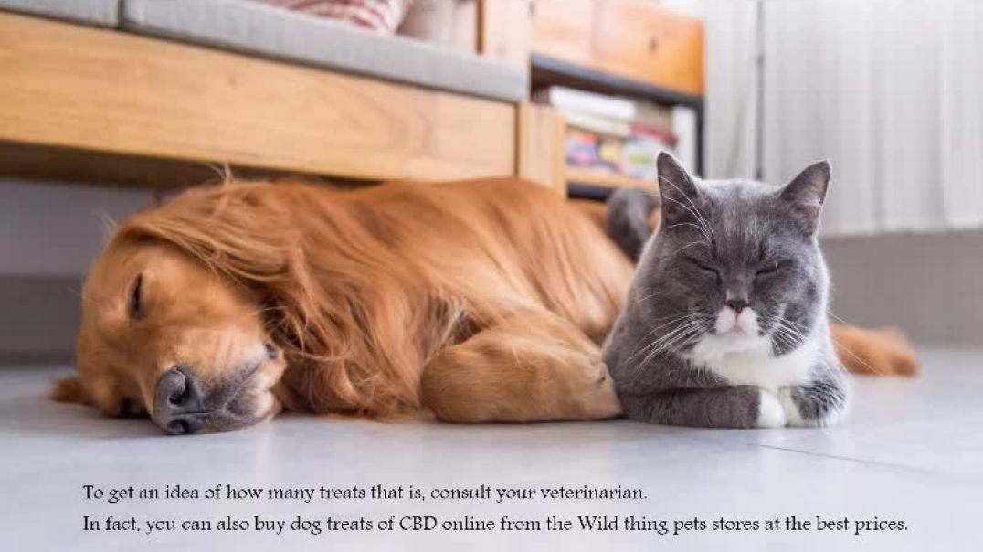 Buy Dog Treats of CBD Online
