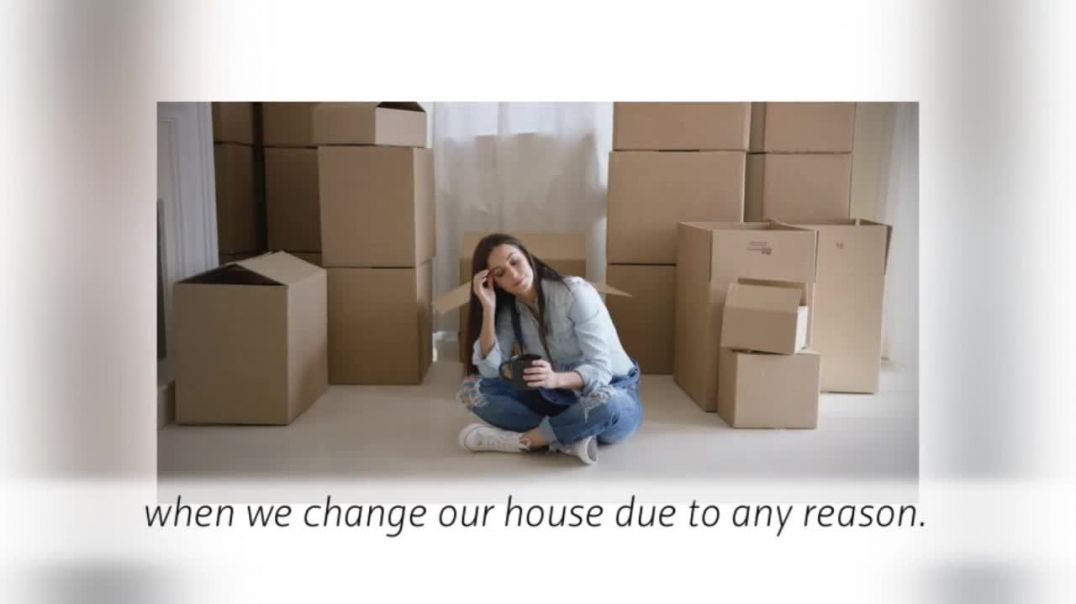 North London Removal Services – Established and Experienced.mp4